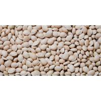 Mocha (Broken Beans) (மொச்சைக்கொட்டை), 250gms