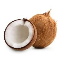 Coconut 1 No