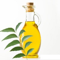 Neo Neem Oil 50ml